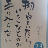 kin75 青い鷲 / 白い世界の橋渡し 音10 の 過ごし方