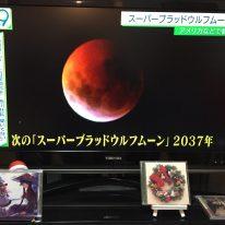 kin89 赤い月 / 青い嵐 音11 の 過ごし方
