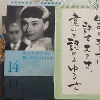kin171 青い猿 / 白い犬 音2 の 過ごし方