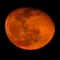 kin209 赤い月 / 赤い月 音1 の 過ごし方